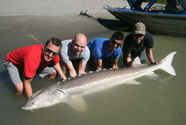 Corporate fishing trips with BC Sportfishing Group